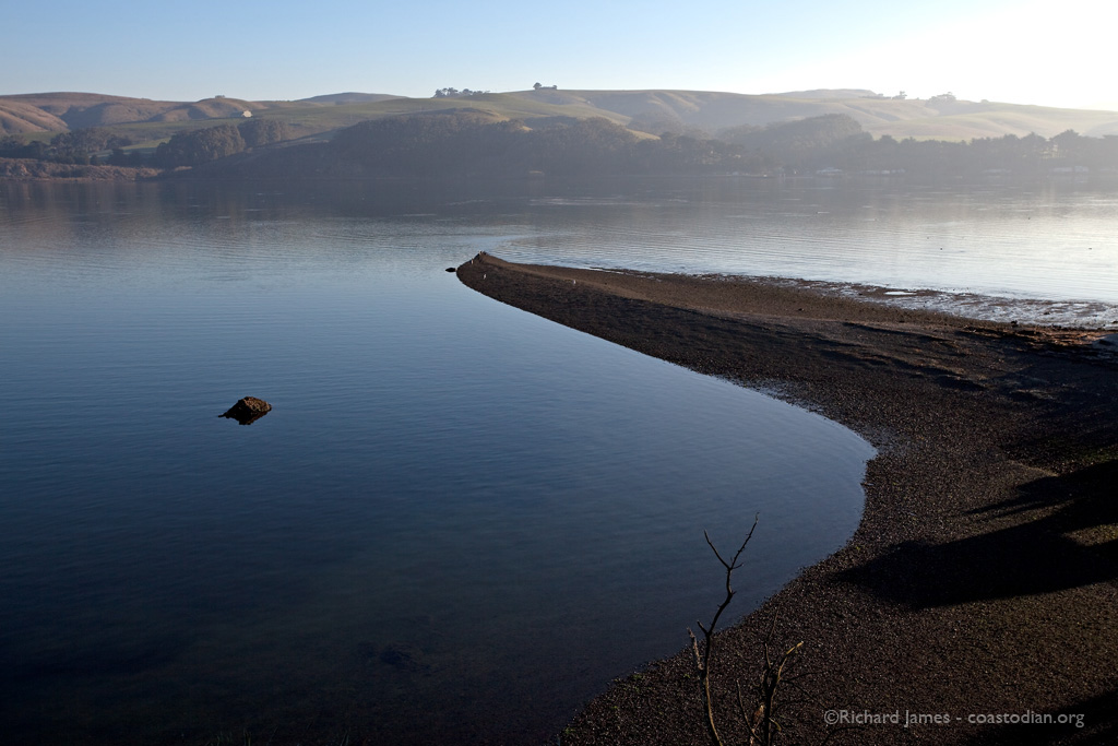 Early morning on Tomales Bay