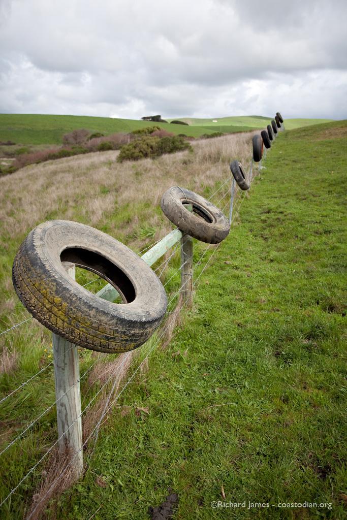 Nine nasty tires hung upon a fence. ©2013 Richard James Photography - coastodian.org