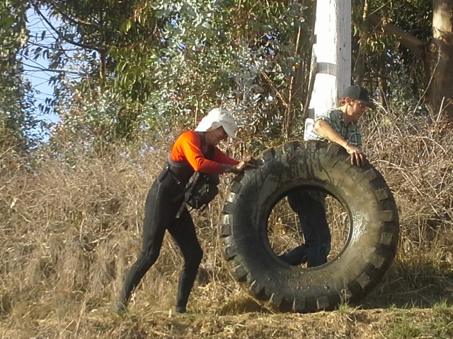 KC and I roll a tractor tire out of Tomales Bay to the parking lot for removal.