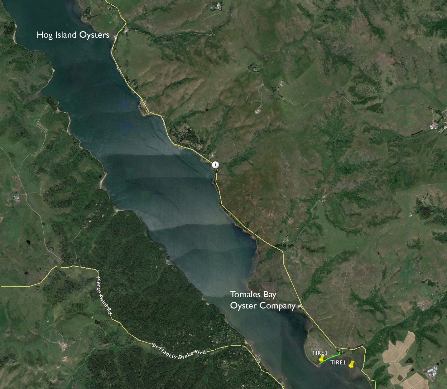 Lower right of this image shows where I attached the floats (yellow pin to the right) and where it drifted with the high tide the next morning a third of a mile away. - - Kudos to Hog Island Oysters for taking a leadership role in cleaning up their oyster debris, as well as the errant trash of others.
