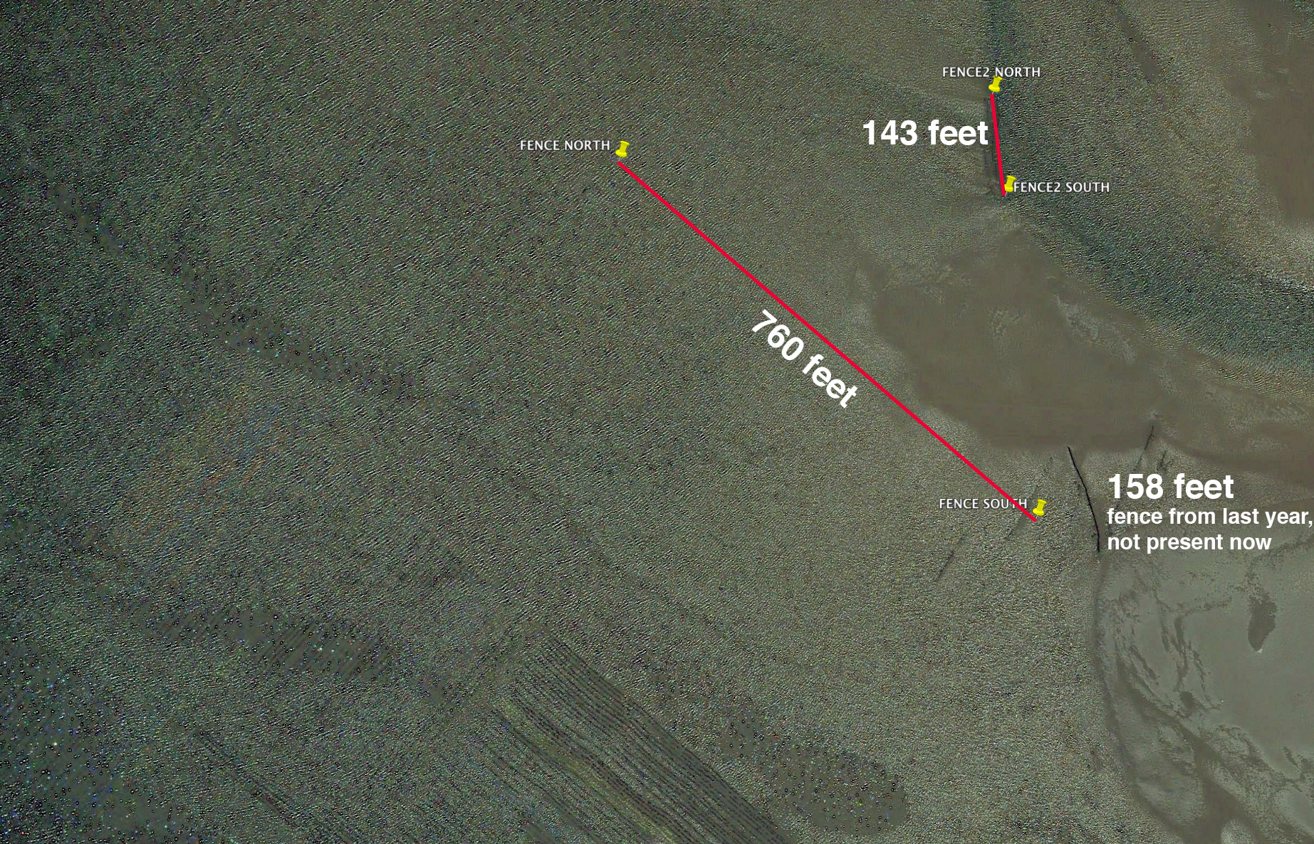 "The red line shows where two ""fences"" are in Tomales Bay. Note the length of these structures, as well as the length of a previous structure from last year that is no longer present, yet shown in the google earth image from last year."