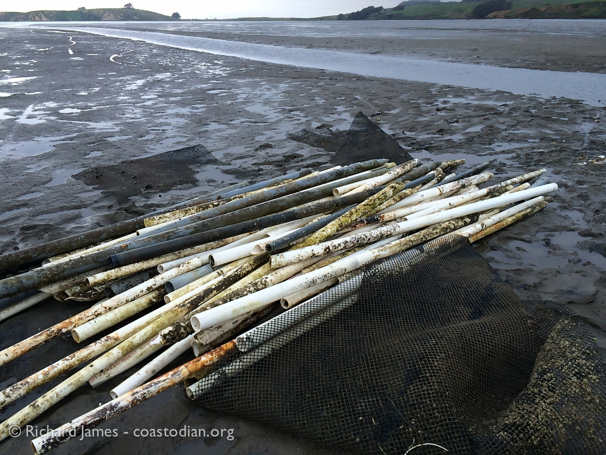 pile of PVC tubes at area of unpermitted structure in Tomales Bay at Walker Creek