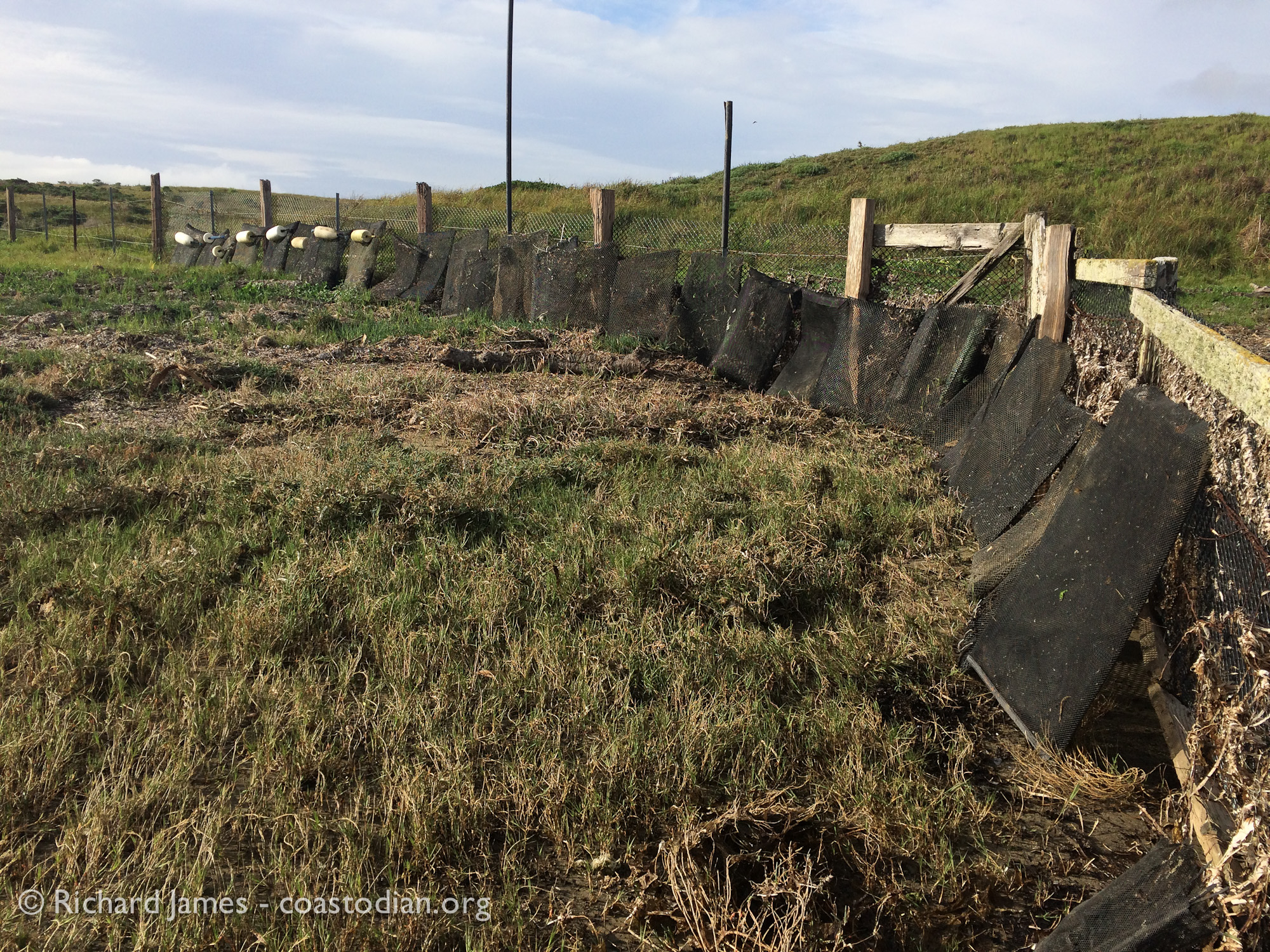 ©Richard James - coastodian.org Abandoned Hog Island Oysters grow-out bags collected adjacent to lease M-430-15 on 22 March, 2015