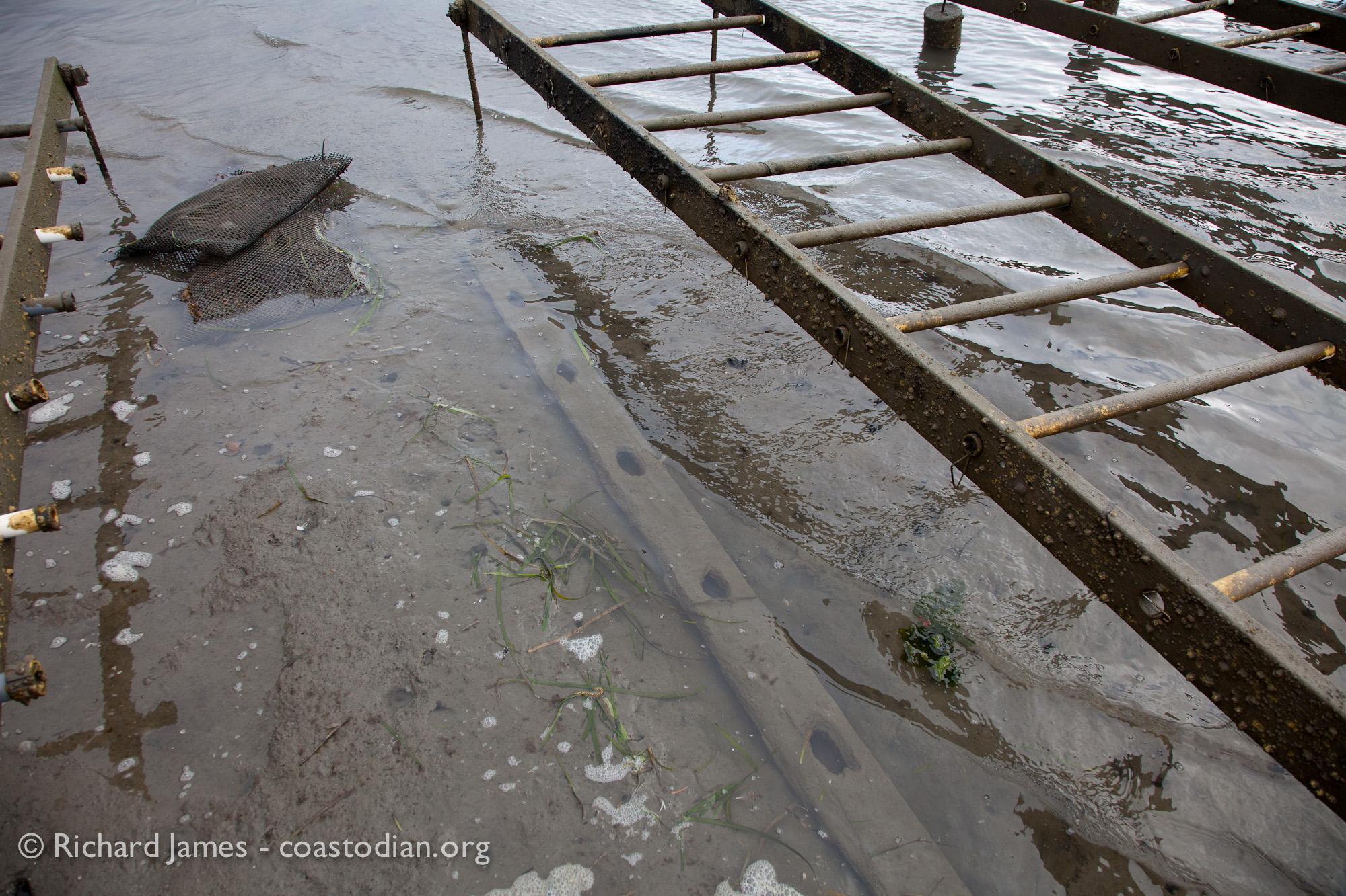 ©Richard James - coastodian.org Abandoned oyster rack lumber on Hog Island Oysters lease M-430-10 on 22 March, 2015