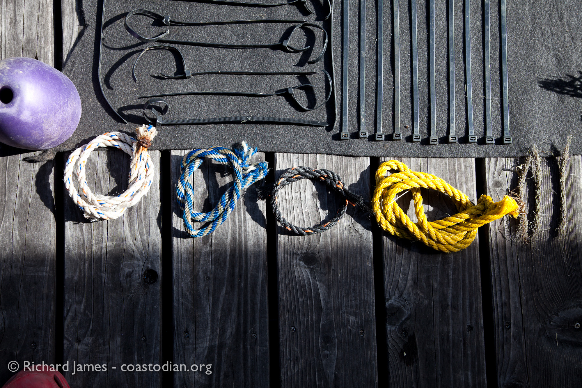 ©Richard James - coastodian.org Abandoned zip-ties & rope remnants, float collected on shore adjacent to Hog Island Oysters lease M-430-15 on 22 March, 2015