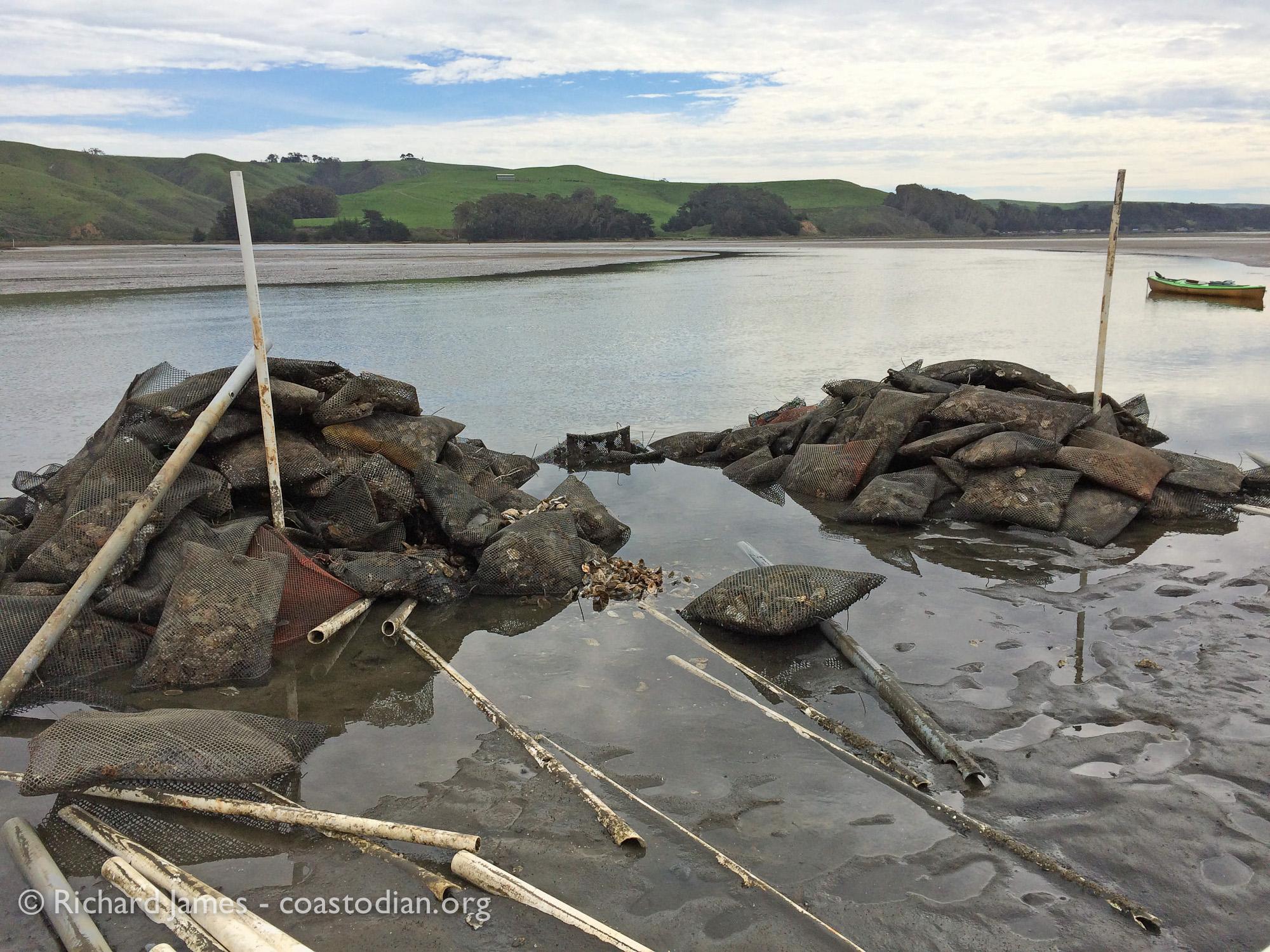 TBOC unpermitted dike on Walker Creek - Tomales Bay