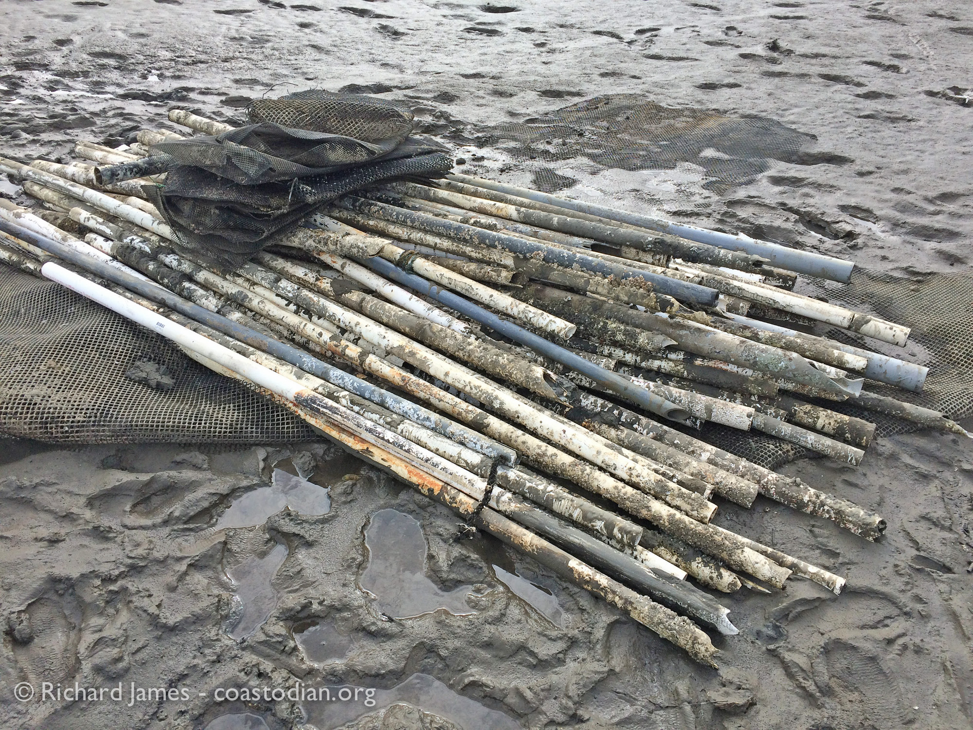 PVC tubes from TBOC unpermitted dike on Walker Creek - Tomales Bay