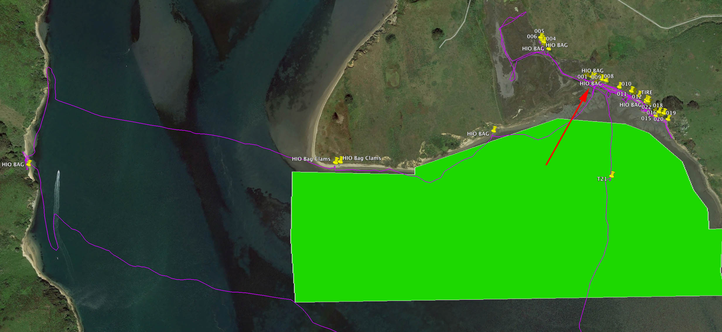 Green polygon depicts Hog Island Oysters lease M-430-15, near Tom's Point. Red arrow points to location where abandoned grow-out bags were left on 22 March. Each yellow pin shows location of abandoned grow-out bag. T21 is where I reattached 3 bags of live oysters to anchor line.