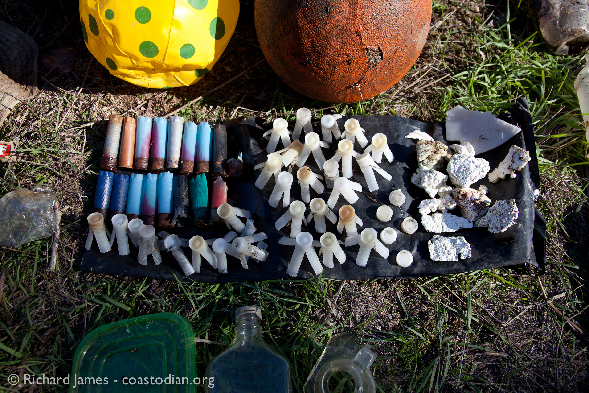 How about biodegradable corn starch shotgun shells and shot cups (AKA wads).   ©Richard James - coastodian.org