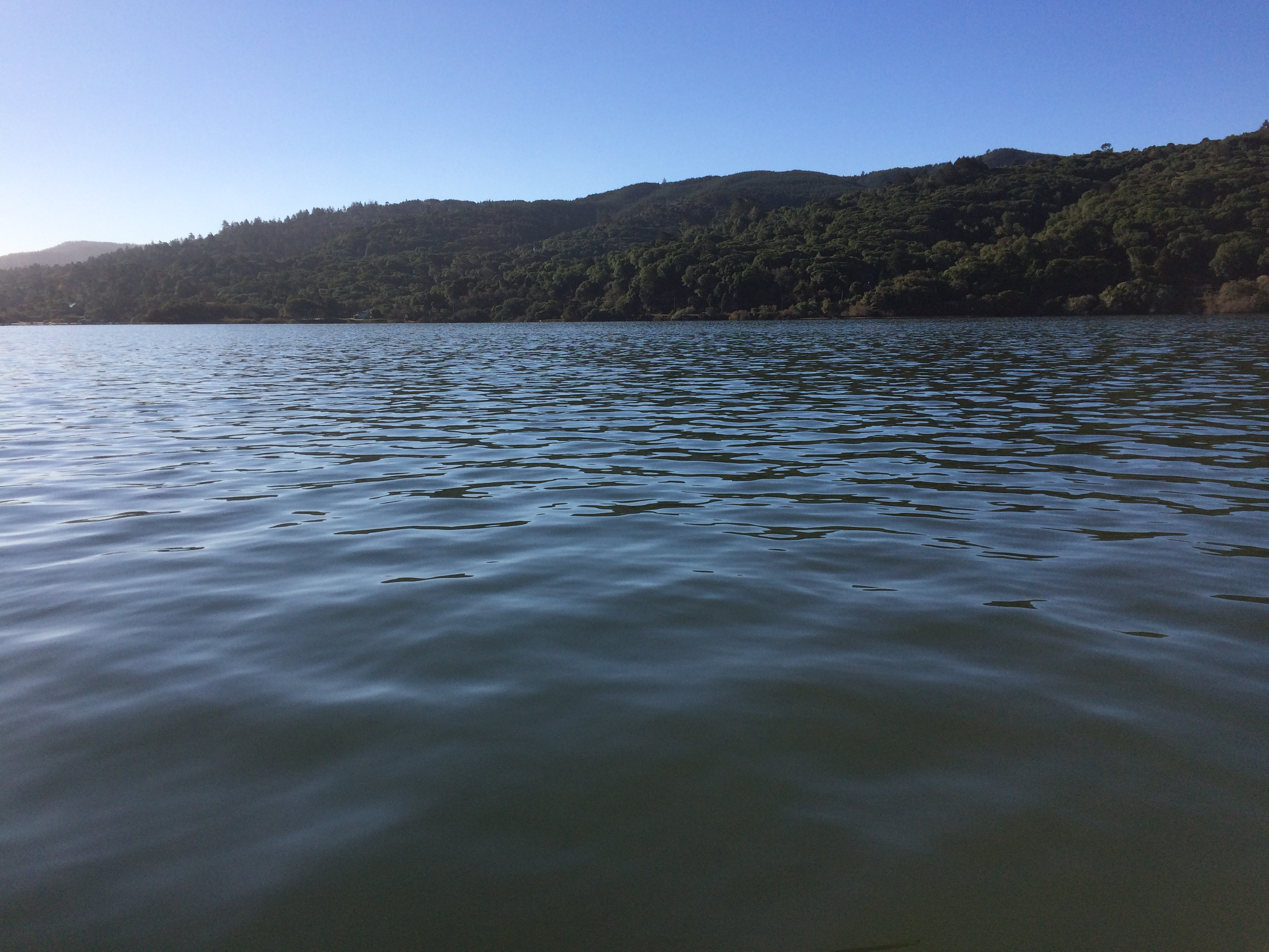 Looking west across Tomales Bay at Inverness Ridge during the King Tide of 25 Nov 2015.