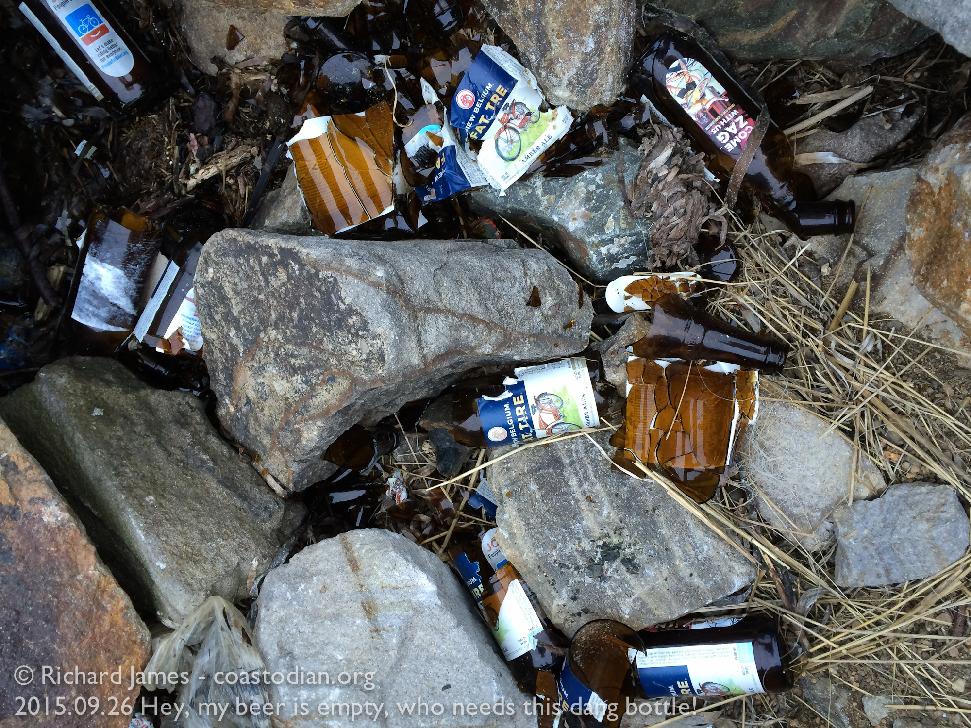 ©Richard james - coastodian.org bottle empty, why recycle it when you can smash it on the shore of this gorgeous bay.