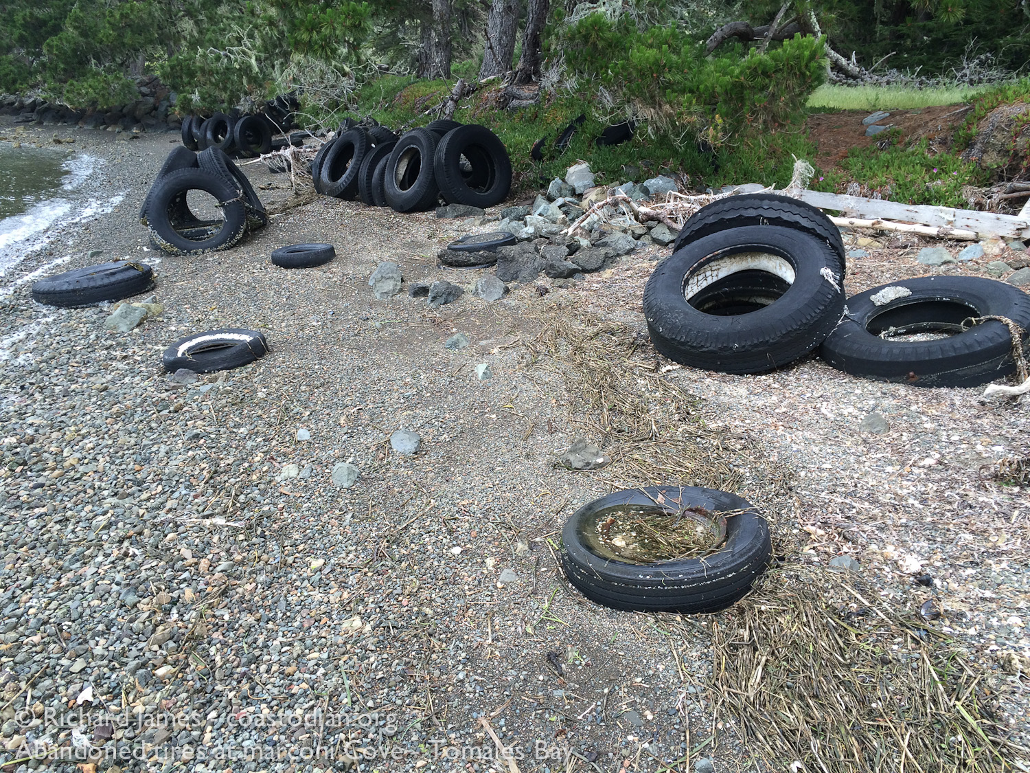 A few of the hundreds of abandoned tires at Marconi Cove - Tomales Bay ©Richard James - coastodian.org