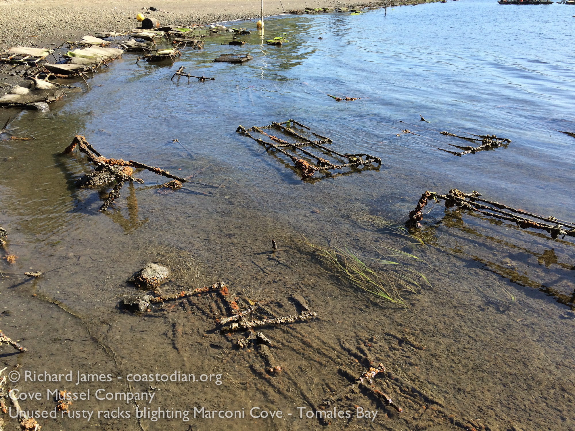 Unused iron racks, blighting Marconi Cove, Tomales Bay ©Richard James - coastodian.org