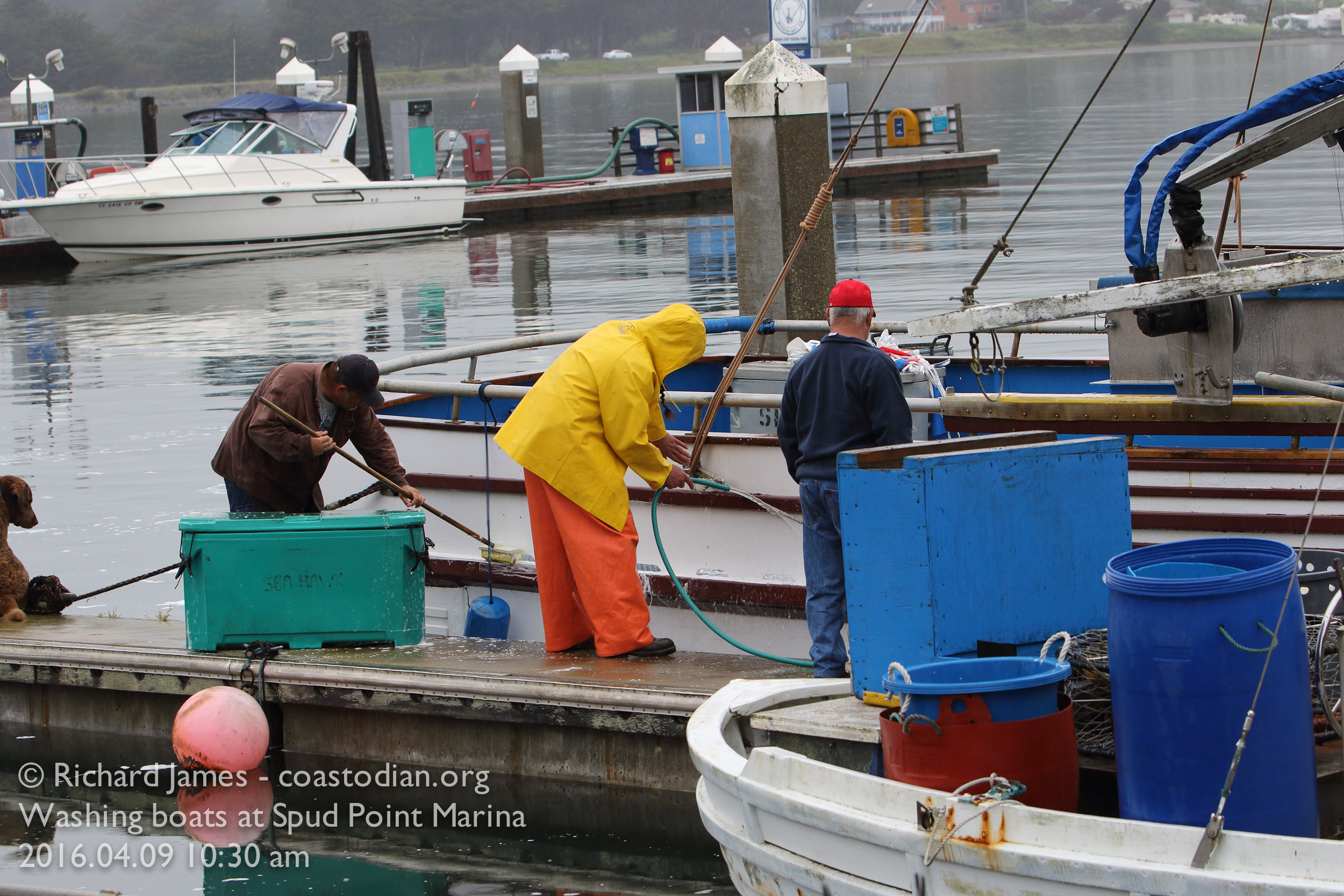 Washing down the boat at Spud Point Marina, Bodega Bay ©Richard James - coastodian.org