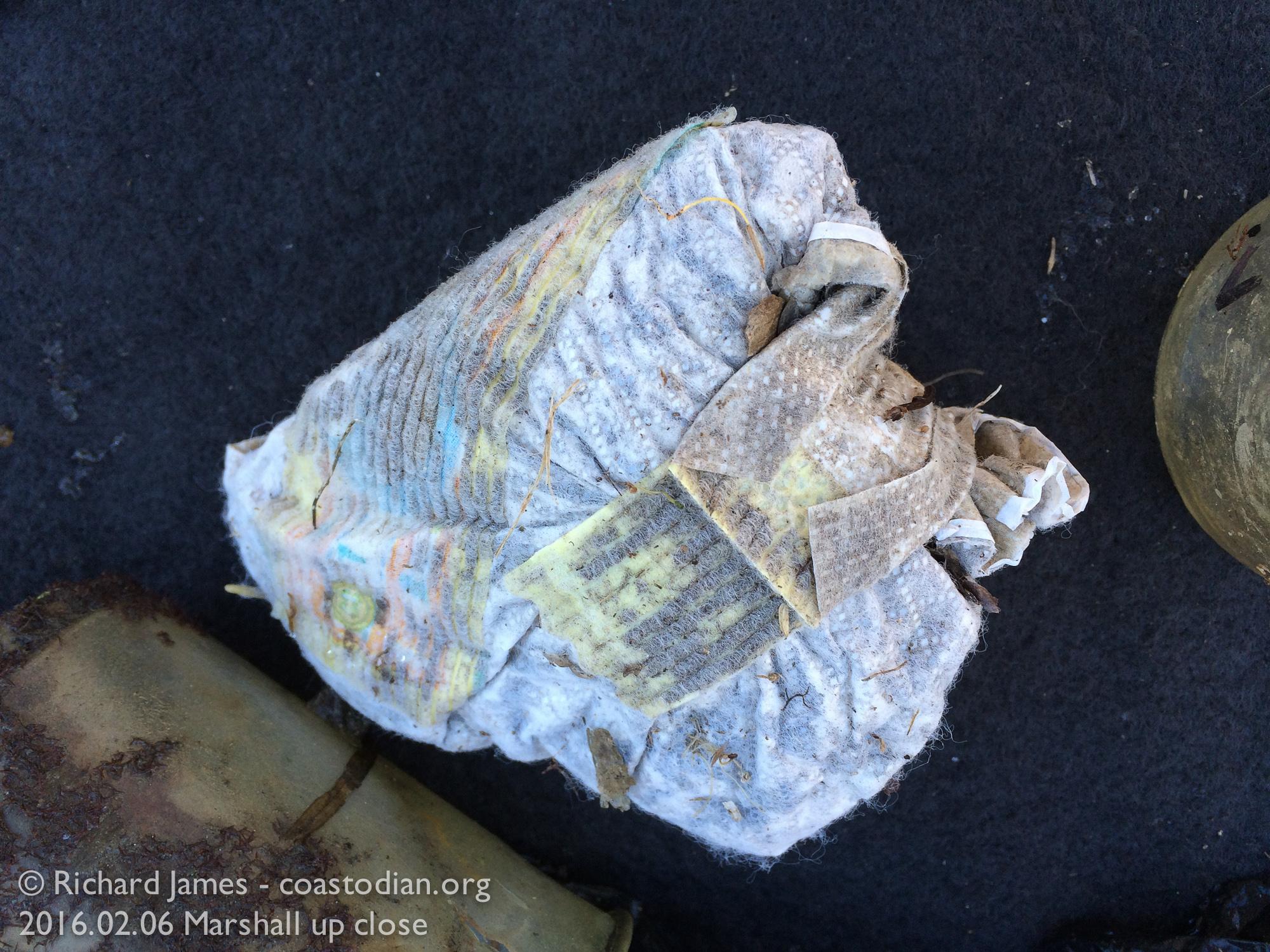 Disposable diaper from mud below Marshall Tavern ©Richard James - coastodian.org