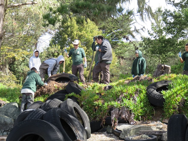 CCNB crew cleaning up abandoned tires at Marconi Cove, Tomales Bay ©Brandon Benton - Conservation Corps North Bay