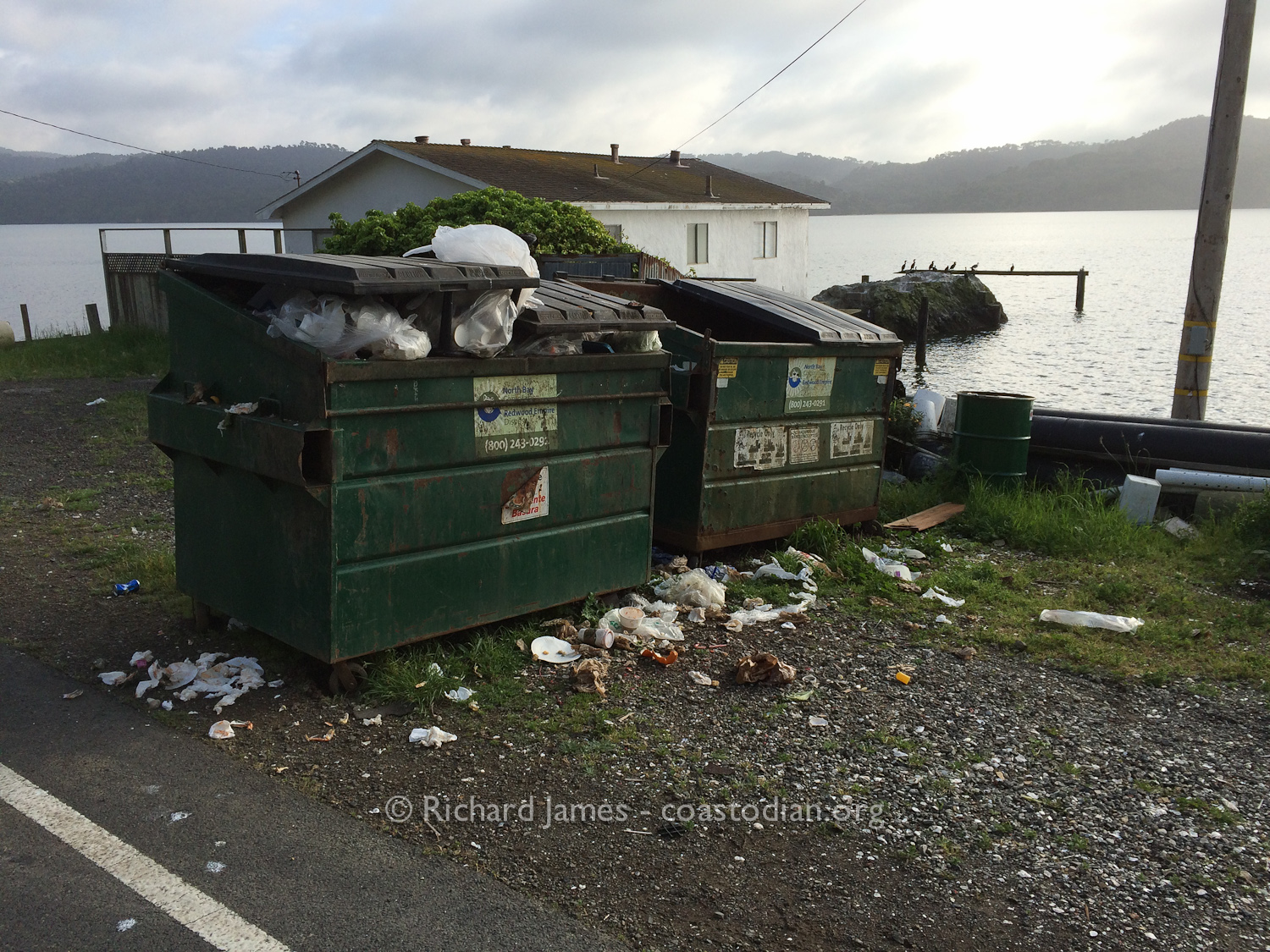 11 April, 2016 Tony's Seafood Garbage bins ©Richard James - coastodian.org