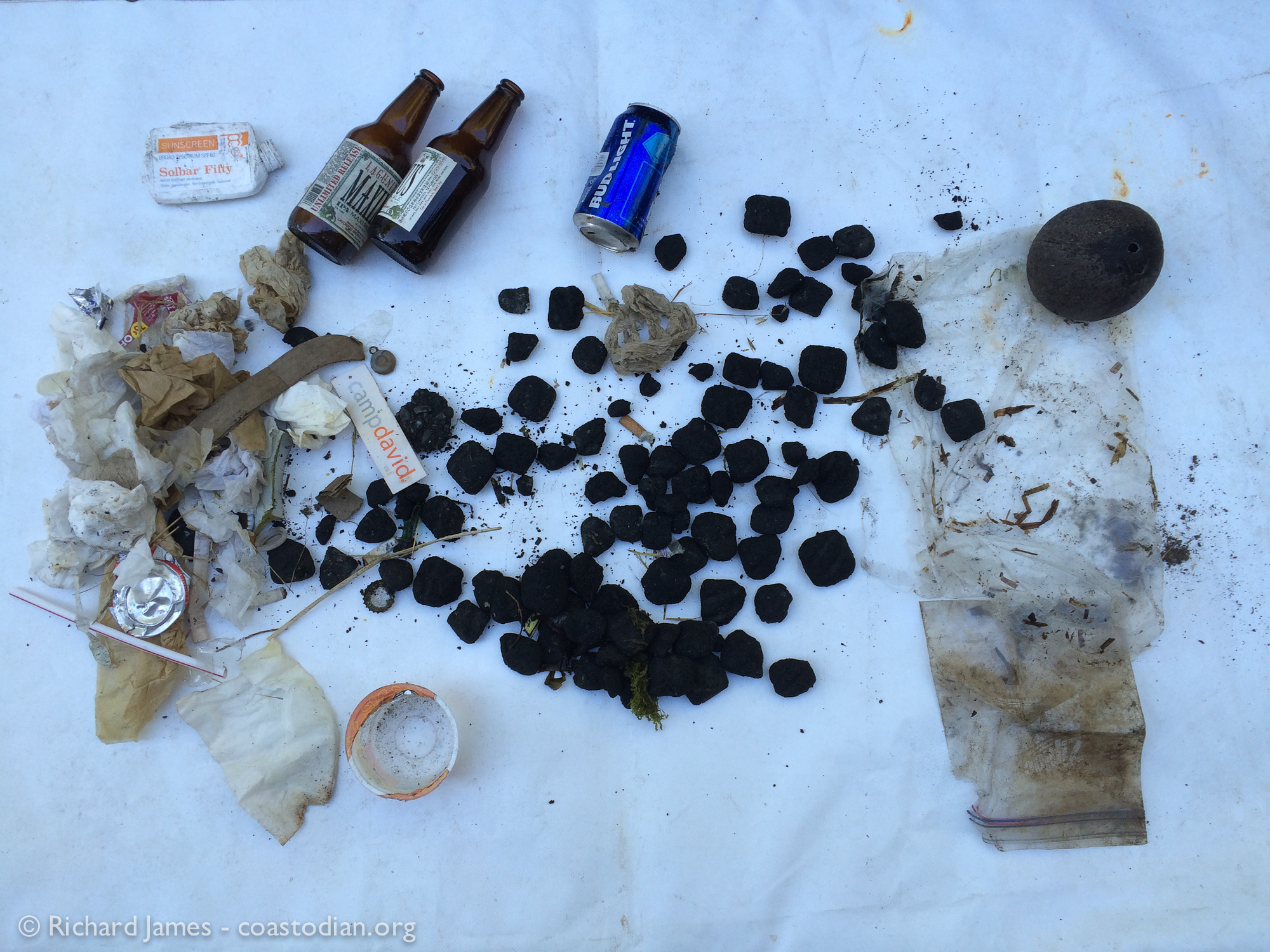 This pile of BBQ briquettes, napkins, toilet paper, beer bottles, gloves and other trash was pulled out of Tomales Bay at Grassy Point on the eastern shore on 13 August, 2016