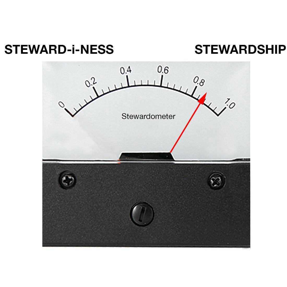 stewardinessgauge-3
